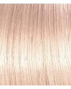 Illumina Color Platinum Lilly
